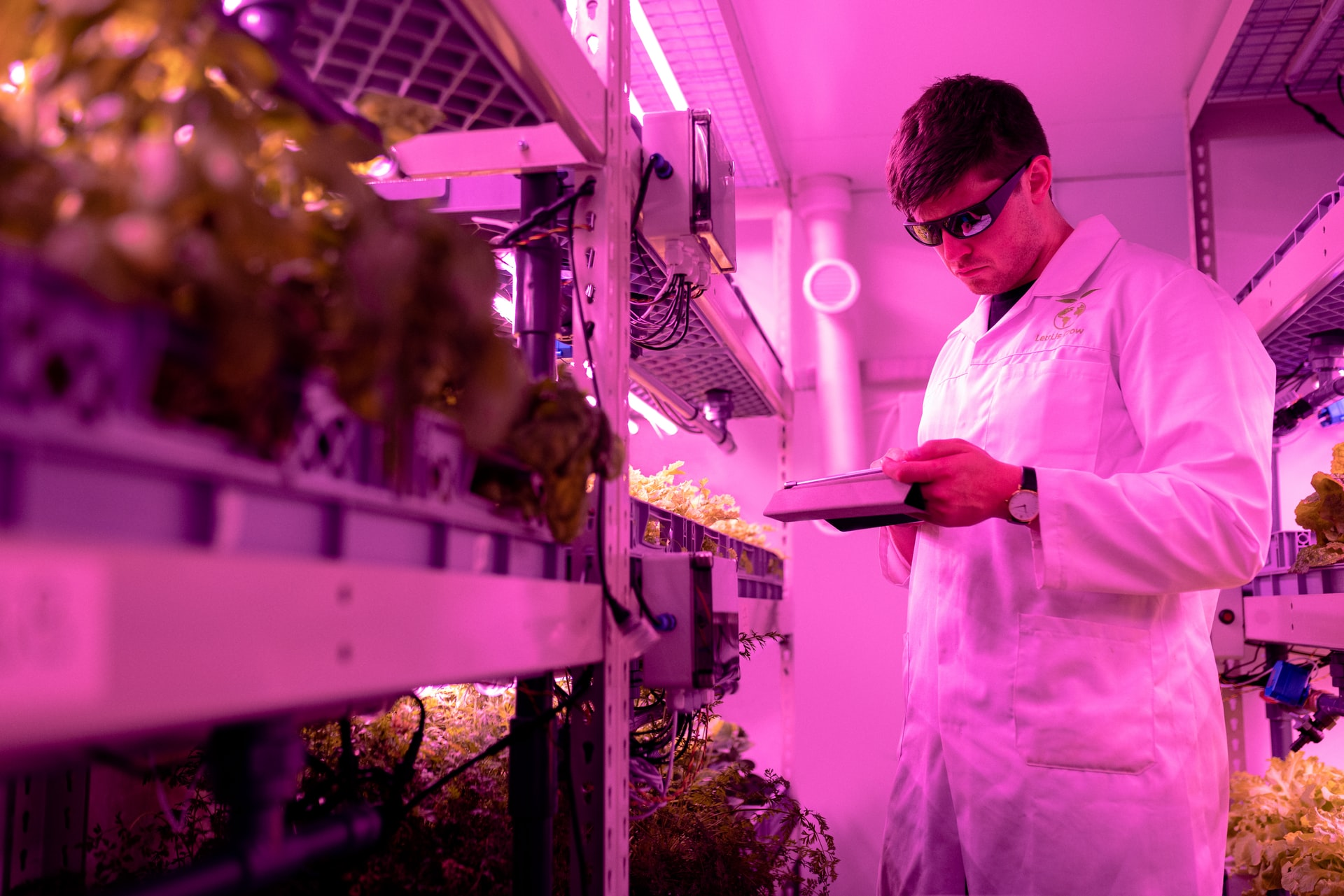 Singapore amplifies food sustainability initiative